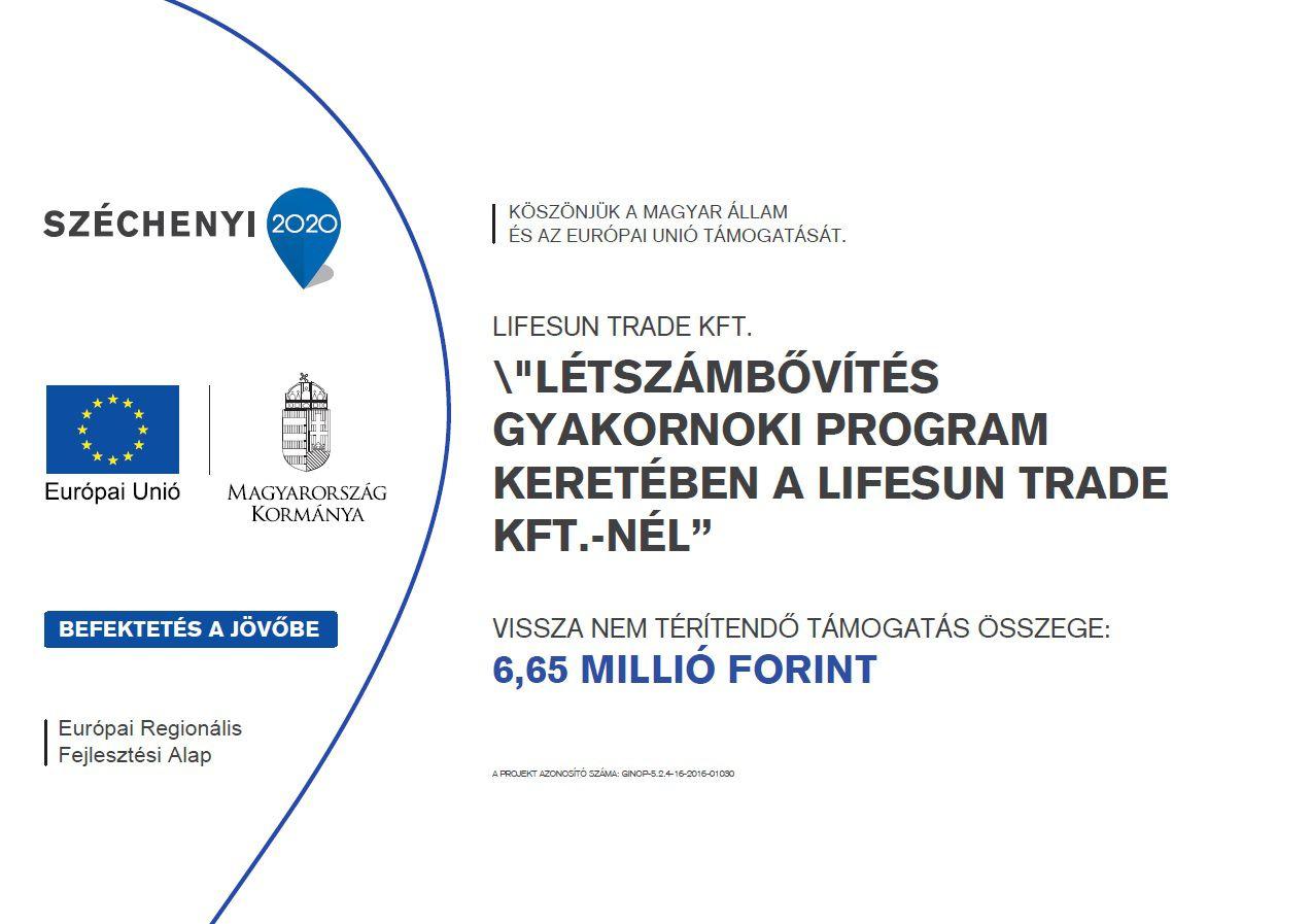 Létszámbővítés gyakornoki program keretében a Lifesun Trade Kft.-nél